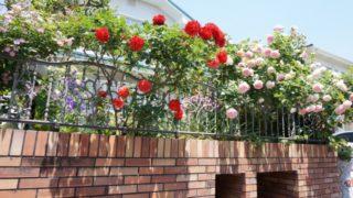 アイアンフェンスは、薔薇や植栽との相性が最強