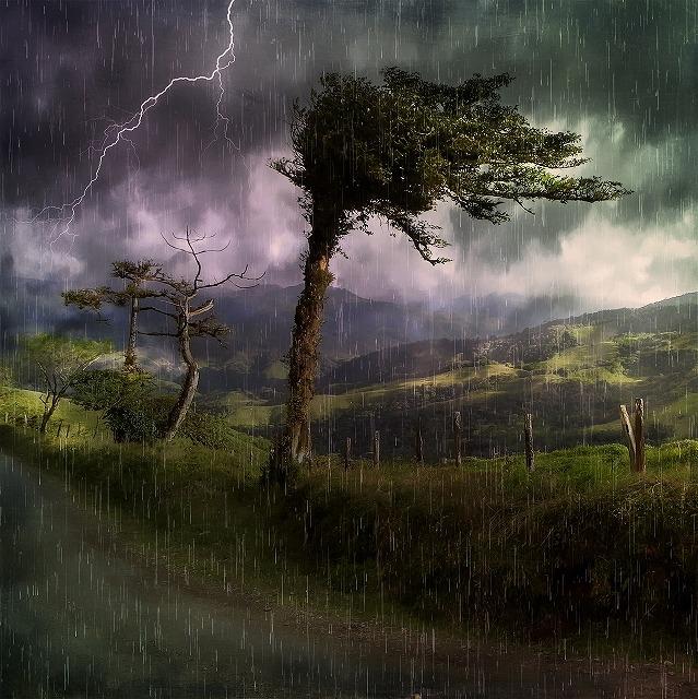 台風の強風を耐えるには、風を受け流す必要がある