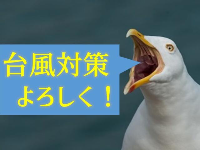 3連休台風17号が直撃します、台風対策をお忘れなく!