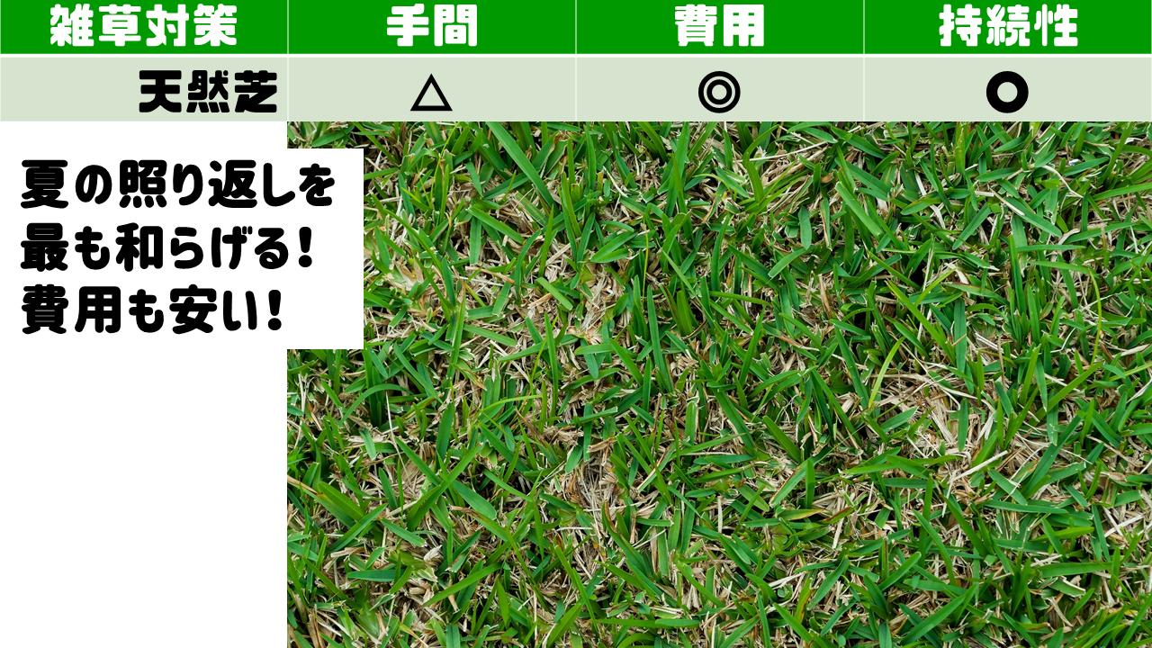天然芝で雑草対策!