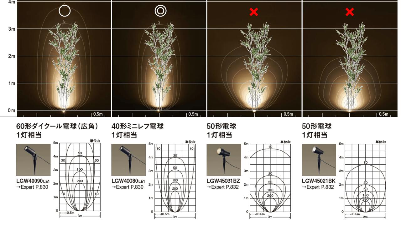 竹を照らしたイメージ図