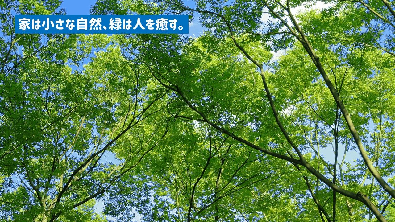 人々を癒す緑や自然