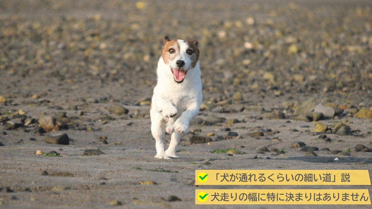 犬走りは特に建築基準法で決められた規定はなし