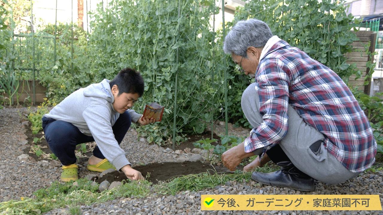 雑草対策として塩を撒くデメリット