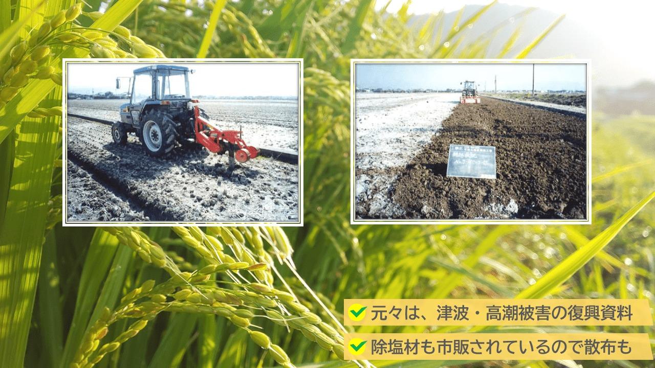 農林水産省から「農地の除塩マニュアル」というものが交付されている