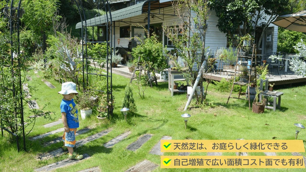 2.戸建てのお庭の大定番「天然芝」