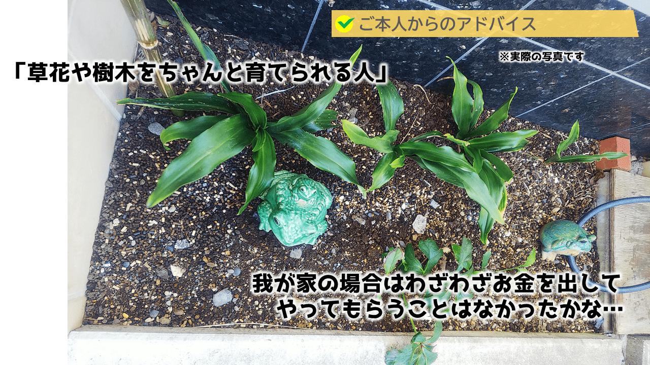草花や樹木を育てられる人が、シンボルツリーを植えてください。