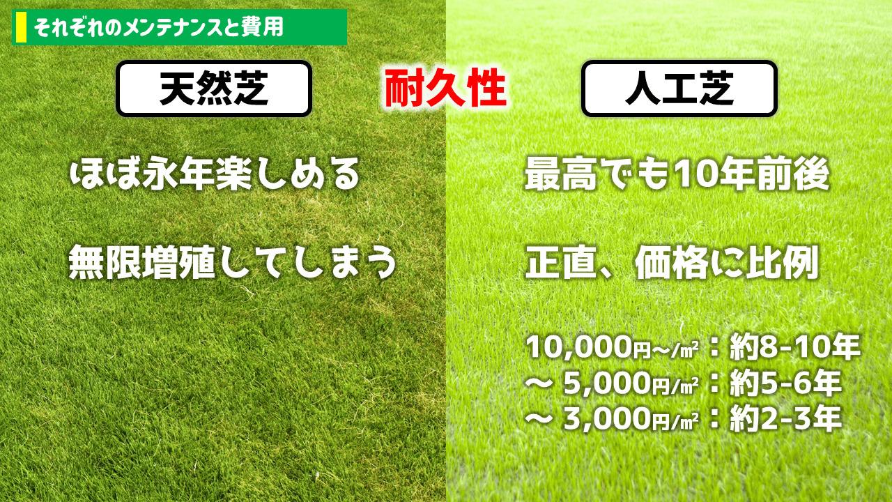 天然芝・人工芝の費用と耐久性