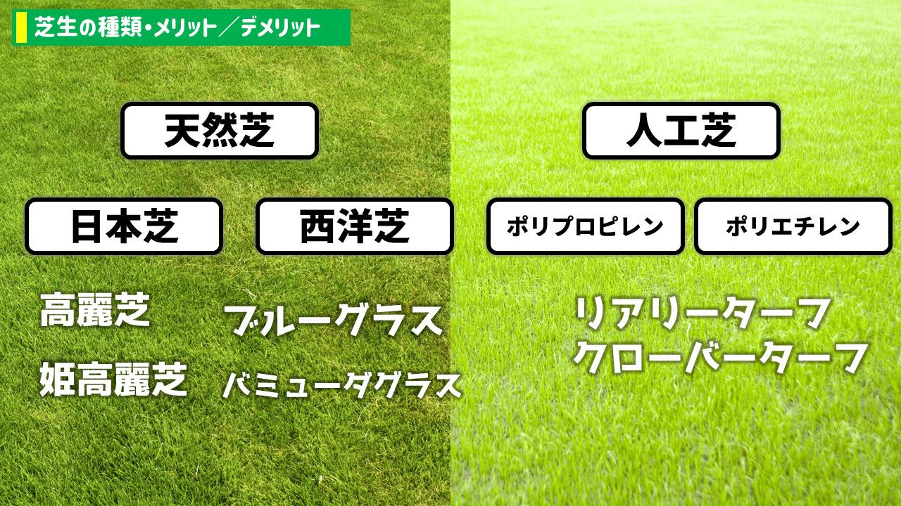 芝生の種類・メリット/デメリット